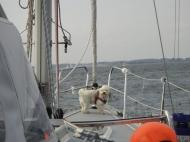 Bild_024-2012